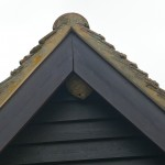 WASP NEST NEAR VERWOOD PHOTOGRAPHED BY NO-NONSENSE PEST CONTROL